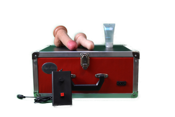 Magic Motion Exquisite Standard mit Kabel-Handsteuerung